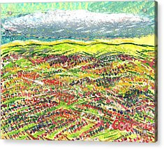 Beyond The Foothills Acrylic Print