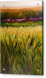 Beyond The Valley Acrylic Print by Shannon Grissom