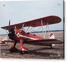 Bi-wing-1 Acrylic Print
