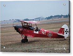 Bi-wing-2 Acrylic Print