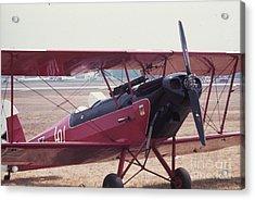 Bi-wing-5 Acrylic Print