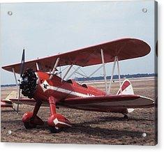 Bi-wing-6 Acrylic Print