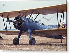 Bi-wing-8 Acrylic Print