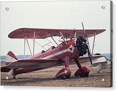 Bi-wing-9 Acrylic Print