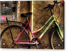 Bicycle In Trastevere Acrylic Print by Brian Thomson