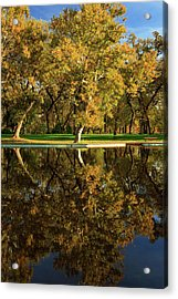 Bidwell Park Reflections Acrylic Print by James Eddy