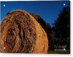 Big Bales Acrylic Print by The Stone Age