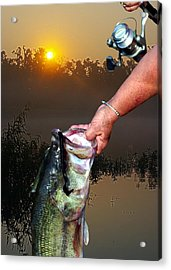 Big Bass At Sunrise Acrylic Print by Ron Kruger