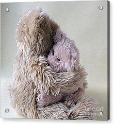 Big Bear Holds Little Bear Acrylic Print by Ruby Hummersmith