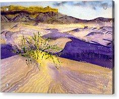 Big Bend Landscape II Acrylic Print by Myrna Salaun