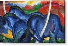 Big Blue Horses Acrylic Print by Franz Marc