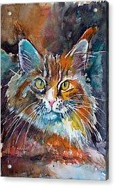 Big Cat Acrylic Print by Kovacs Anna Brigitta