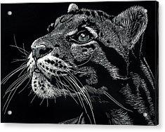 Big Cat Acrylic Print