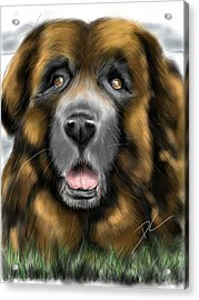 Acrylic Print featuring the digital art Big Dog by Darren Cannell