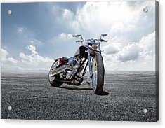 Acrylic Print featuring the photograph Big Dog Pitbull by Peter Chilelli