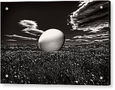 Big Egg Acrylic Print