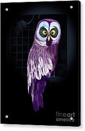 Big Eyed Owl Acrylic Print