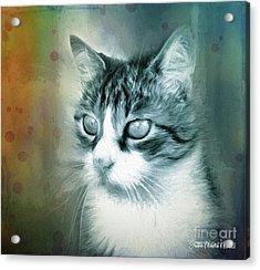 Acrylic Print featuring the digital art Big Eyes by Jutta Maria Pusl