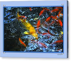 Big Fish Little Fish Acrylic Print by Linda Olsen