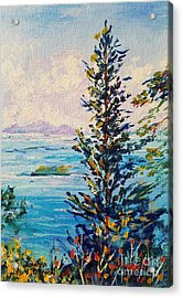 Big Island Istanbul Acrylic Print