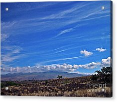 Big Island Landscape 3 Acrylic Print by Bette Phelan