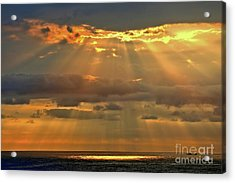 Acrylic Print featuring the photograph Big Island Rays by DJ Florek