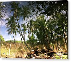 Big Island Reflections Acrylic Print by Art Shimamura