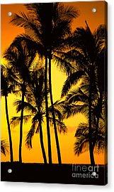 Big Island, View Acrylic Print by Greg Vaughn - Printscapes