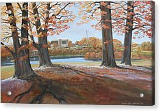 Big Oaks In Fall Acrylic Print by Werner Pipkorn