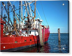 Acrylic Print featuring the photograph Big Red In Barnegat Bay by John Rizzuto