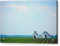 Big Sky In Spring Acrylic Print