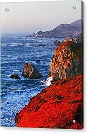 Big Sur Acrylic Print by James Rasmusson