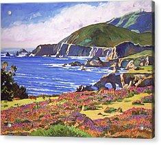 Big Sur Wildflowers - Plein Air Acrylic Print