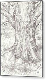 Big Tree Acrylic Print by Ruth Renshaw