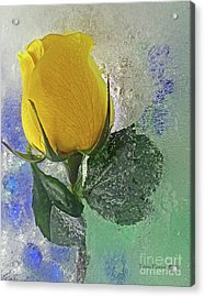 Big Yellow Acrylic Print by Terry Foster
