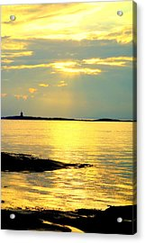 Have You Heard Of An Even Bigger World  Acrylic Print by Hilde Widerberg
