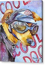 Biker Weiner Acrylic Print