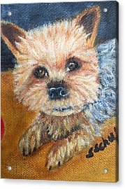 Acrylic Print featuring the painting Billy by Sharon Schultz