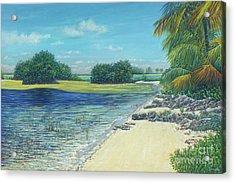 Bimini Mangroves Acrylic Print