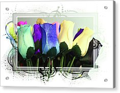 Birch Bark Roses 17 Acrylic Print by Cindy Nunn