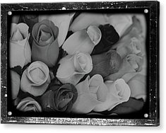 Birch Bark Roses 20 Acrylic Print by Cindy Nunn