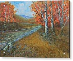 Birch Fall Acrylic Print