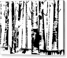 Birch Forest Black Acrylic Print
