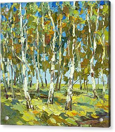 Birch Forest Acrylic Print by Dmitry Spiros