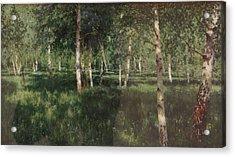 Birch Grove Acrylic Print by Isaac Levitan