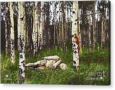 Birch Having A Tree Break Acrylic Print