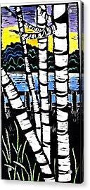 Birch Lake Acrylic Print