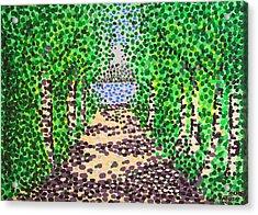 Birch Path Acrylic Print