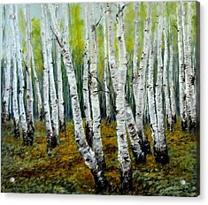 Birch Trail Acrylic Print