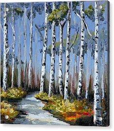 Birch Tree Path Acrylic Print